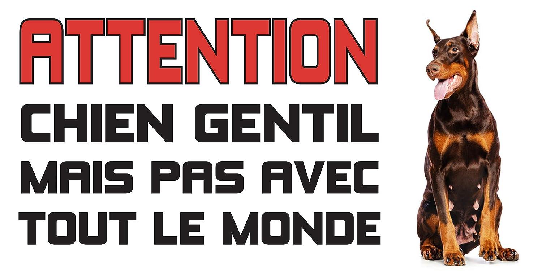 HD PRINT Panneau Attention au Chien Doberman Brun Humour mod/èle 2 en 30x15cm