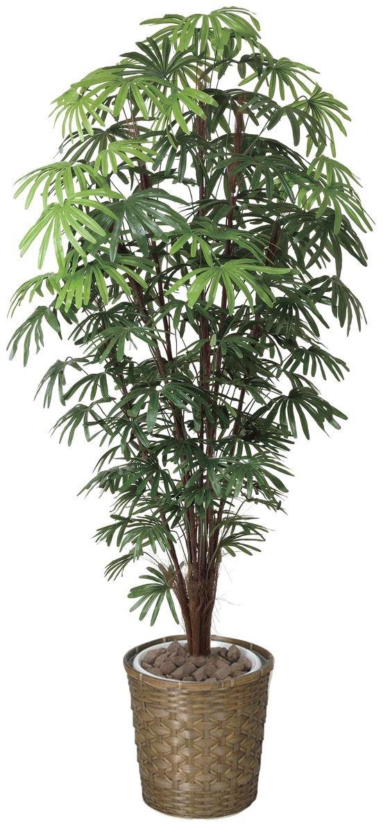 tree-j/ 造花 光触媒 観葉植物 シュロチク 180cm B00RNY1Q36
