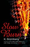 Slow Burn: (The Driven Series)