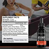 Raspberry Ketones Exogenous Keto Drops - Potent
