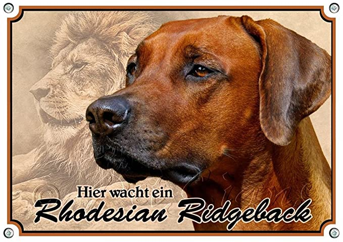 Petsigns Hundeschild Zwergschnauzer uv-best/ändiges Metallschild