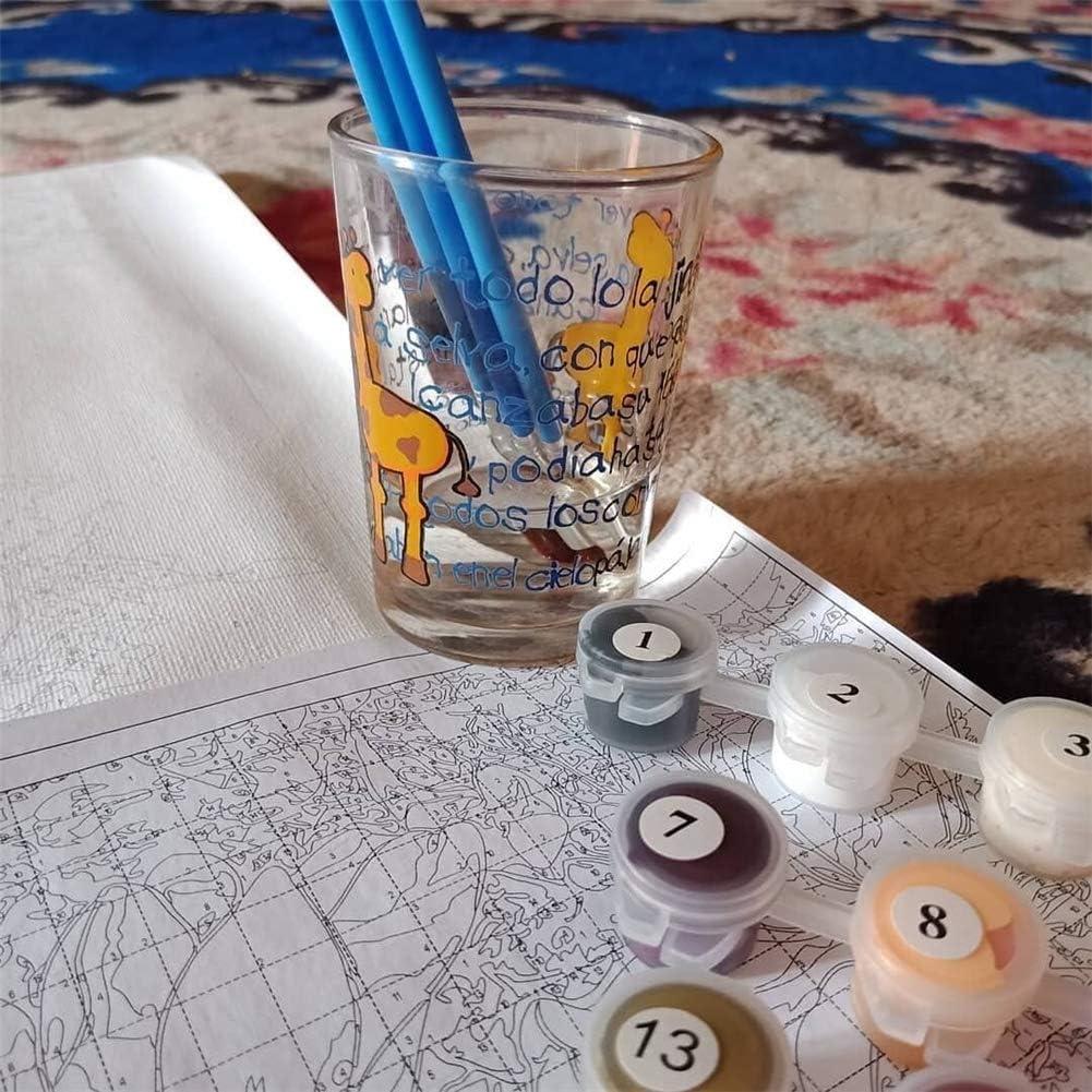 Traumm/ädchen DIY Leinwand Gem/älde nach Zahlen Kits Kunst Handwerk f/ür Heimdekoration 40,6 x 50,8 cm Black Girl Malen nach Zahlen f/ür Erwachsene