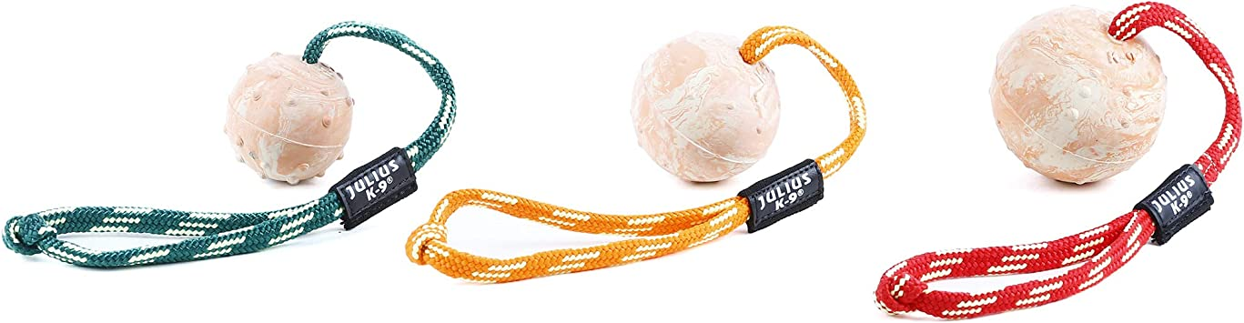 Julius-K9 IDC de Pelota con Ass: Amazon.es: Productos para mascotas