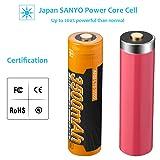 18650 Battery 2x SANYO 3500mAh Protected