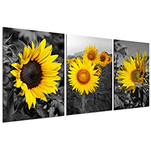Sunflower Decor Wall Art Prints - Black and White Yellow Canvas Painting Flower Plant Daisy Floral Pictures 3 Panels Unframed Bedroom Living Room Bathroom Kitchen Decoration Home Office Modern Artwork