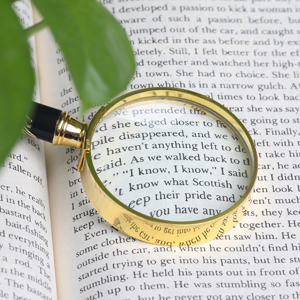 1.9 Lupa Redonda de 5 x 50 mm con drag/ón chino en el mango para leer libros y peri/ódicos COSTIN Lupa de lectura
