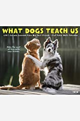 What Dogs Teach Us 2020 Box Calendar Calendar