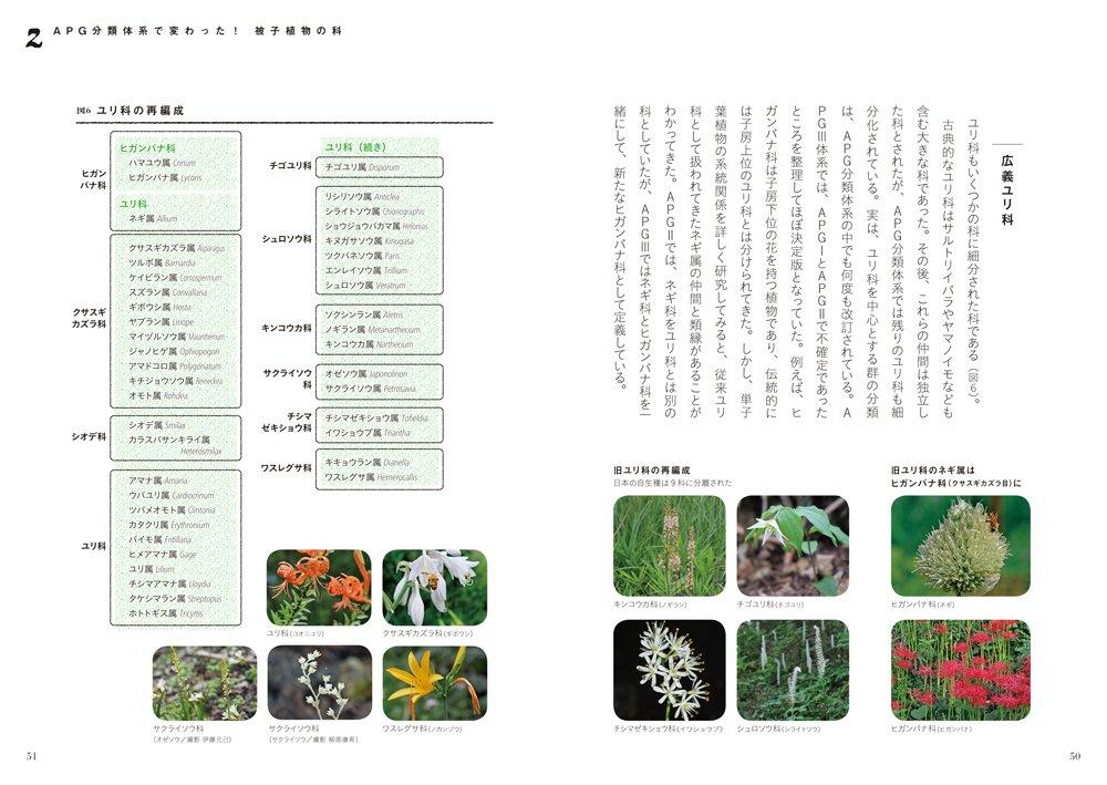 新しい植物分類体系—APGで見る日...
