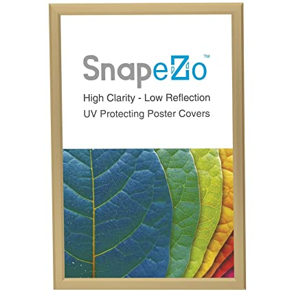 Amazon.com - SnapeZo Poster Frame 22x28 Inches, Gold 1.25\