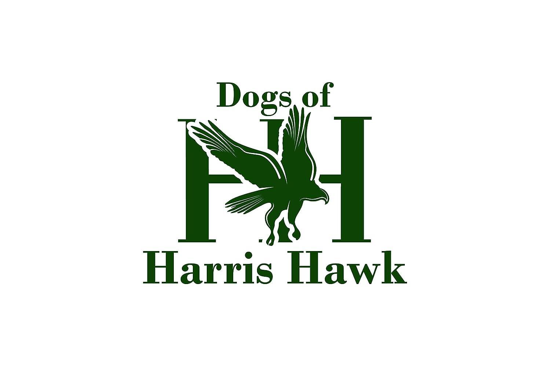 Dogs of Harris Hawk, 3 en 1 premium manos libres perro plomo para ...