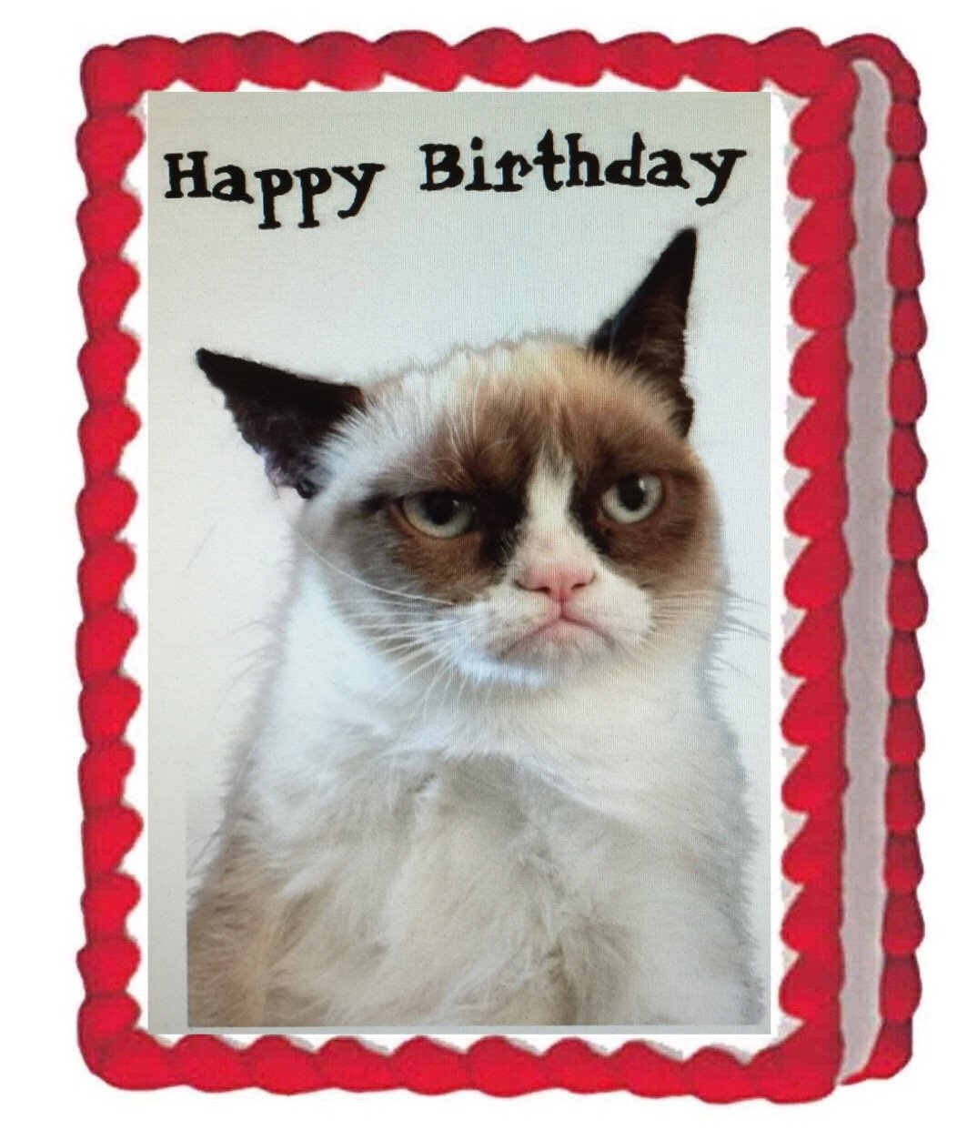 Tremendous Grumpy Cat Edible Cake Image Topper 1 4 Sheet Decoration Birthday Funny Birthday Cards Online Inifofree Goldxyz