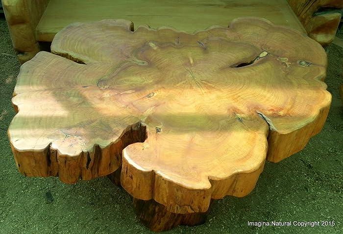 Excellent Amazon Com Large Naturally Unique Cypress Tree Trunk Pabps2019 Chair Design Images Pabps2019Com