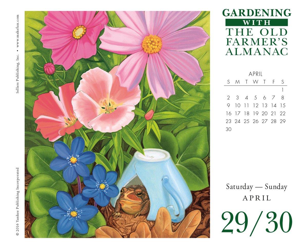 The Old Farmer's Almanac - Gardening 2017 Boxed/Daily Calendar: The Old  Farmer's Almanac/Yankee Publishing: 0764453044423: Amazon.com: Books