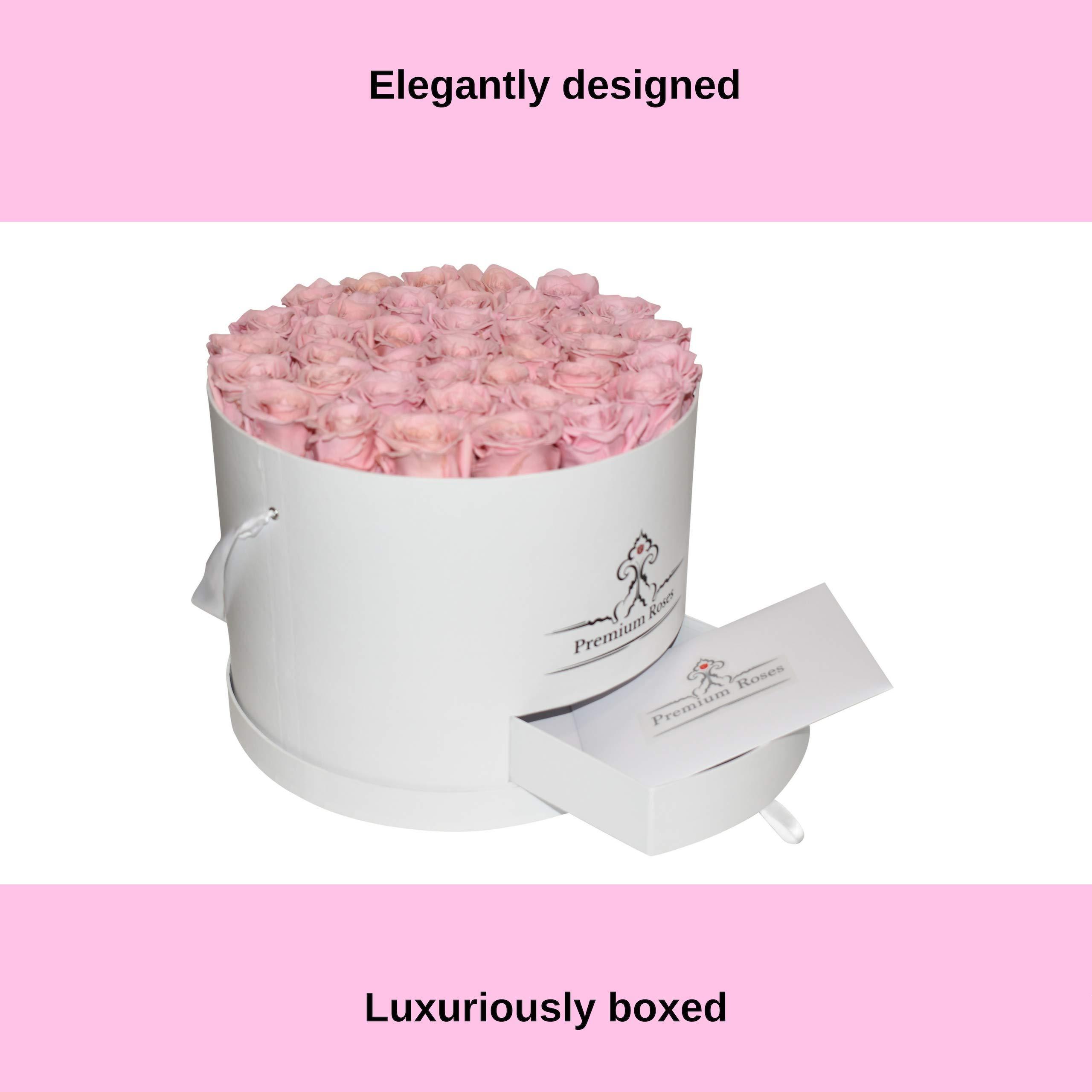 Premium Roses| Model White| Real Roses That Last 365 Days| Fresh Flowers (White Box, Large) by Premium Roses (Image #6)