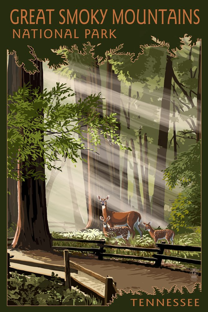 GREAT SMOKY MOUNTAINS、テネシー州 – Pathway In Trees 36 x 54 Giclee Print LANT-46535-36x54 36 x 54 Giclee Print  B017EA1V06