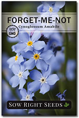 """1/"""" seed favours pretty country design Forget me not Wildflower meadow mix x 25"""