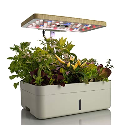 """KL&S Indoor Plant Growing System with Stand - 1 Gallon Base with Heat Lamp, 16"""" x 12"""" - Fun Seed Germination Kit for Kids Learning to Garden : Garden & Outdoor"""