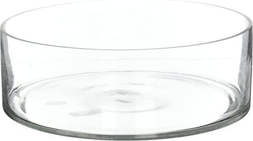 CYS EXCEL Decorative Glass H-4 , D-12 Glass Cylinder Vase Clear