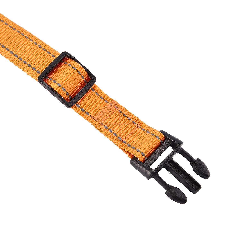 Arancione, M Kaka mall Collare Cane Martingale da Addestramento Taglia Medio Grande Riflettente Regolabile Robusto Sicuro Comodo per Hunter Passeggiata Viaggio