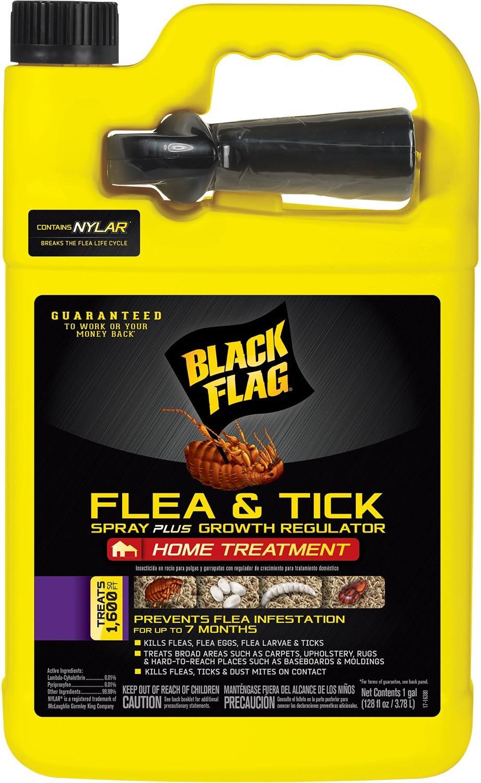 Black Flag 11093 B00PVN1ST8 Extreme Flea Killer Plus Growth Regulator RTU, 1-gal, 1-Count