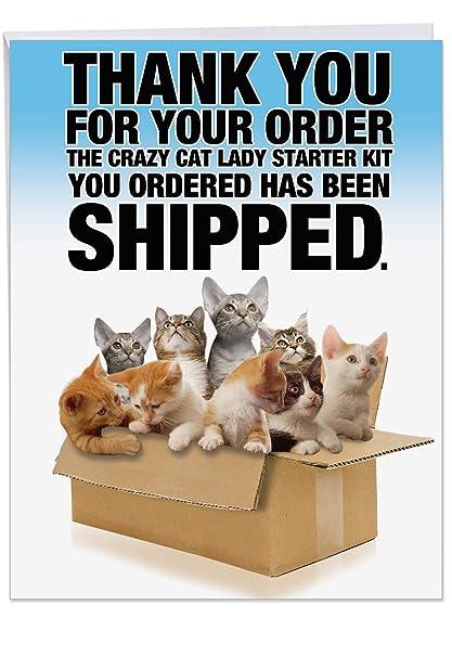 NobleWorks Cat Lady Starter Kit Large 85 X 11 Inch