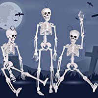 3PCs Halloween Skeleton 16 inch with Movable Joints for Halloween Party Favors,Halloween Decorations