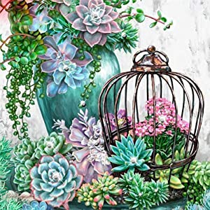 DIY 5D Diamond Painting by Number Kits,Crystal Rhinestone Diamond Embroidery Paintings Pictures Arts Craft for Home Wall Decor,Full Drill,Succulent Plants,15.8x15.8inch