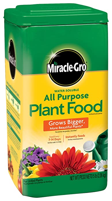 Top 10 Miracle Grow All Pupose Plant Food
