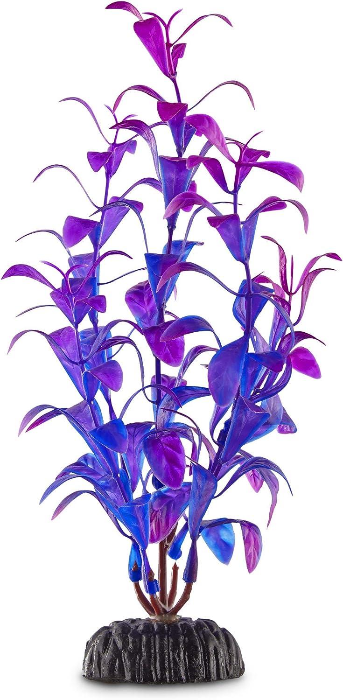 Imagitarium Purple & Blue Foreground Aquarium Plant, Medium