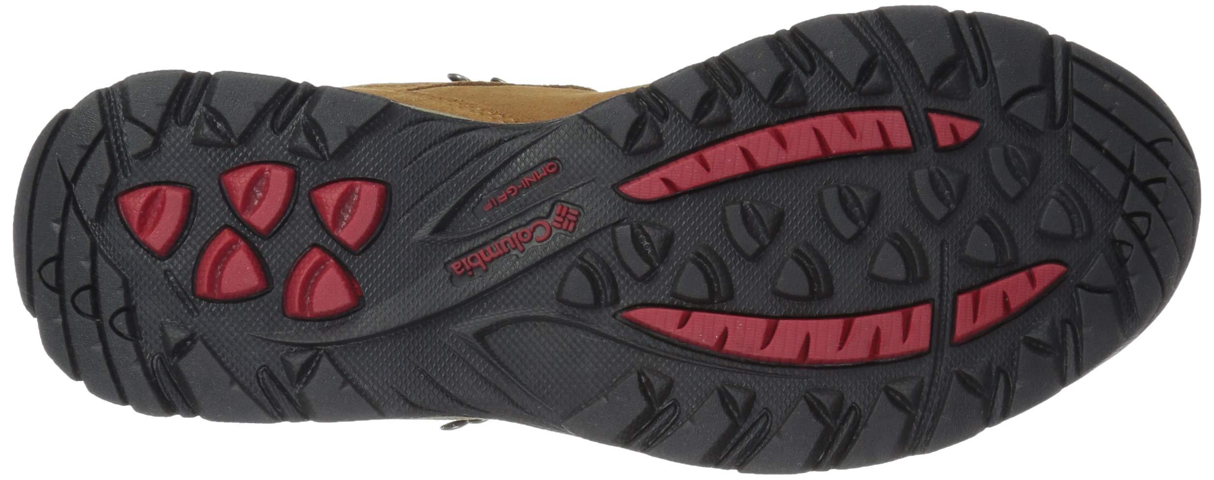 8ccb994205c Columbia Women s Newton Ridge Plus Waterproof Amped Hiking Boot