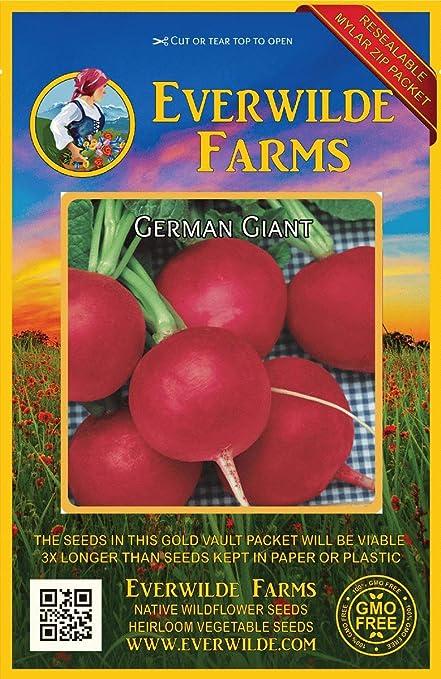 1//4 Lb Champion Radish Seeds Everwilde Farms Mylar Seed Packet