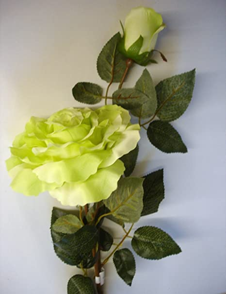 12 stems green giant cabbage rose bud artificial silk flowers 12 stems green giant cabbage rose bud artificial silk flowers clearance offer mightylinksfo