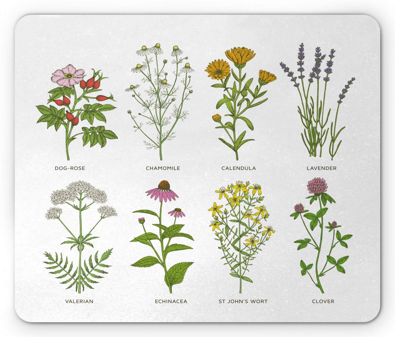 Cojín de ratón de la hierba, flores naturales dulces de los ...