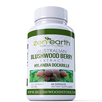 Amazon com: Blushwood Extract 10:1 500 mg 60 Caps: Health & Personal