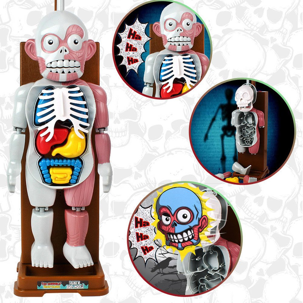 Human Body Organ Model Horror Spoof Tricky Toys with Background Music Table Game/Desktop Game/Horror Game/Educational Game Toy