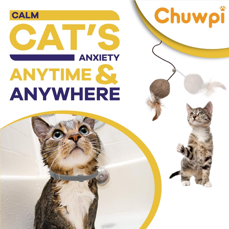 sollievo dallansia per gatti di taglia piccola Collari calmi feromone media e grande CHUPIW Collare calmante per gatti