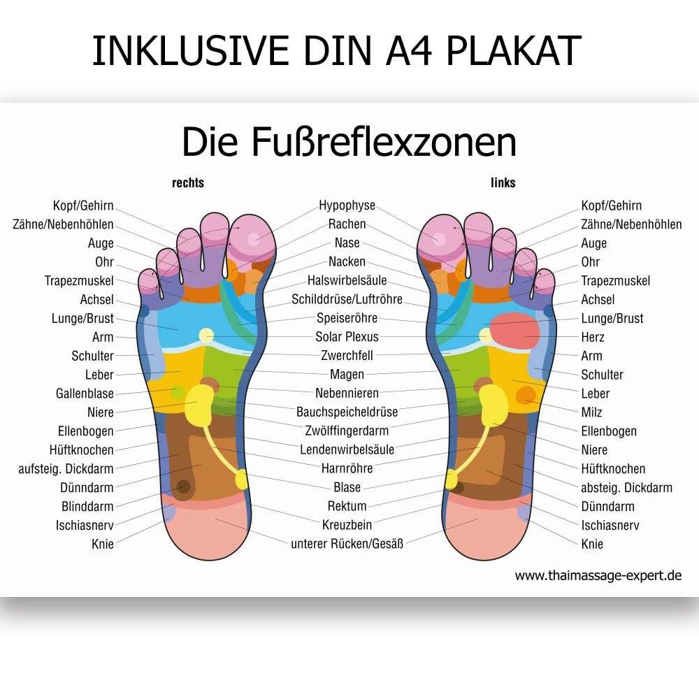 Nett Das Menschliche Brust Diagramm Ideen - Anatomie Von ...