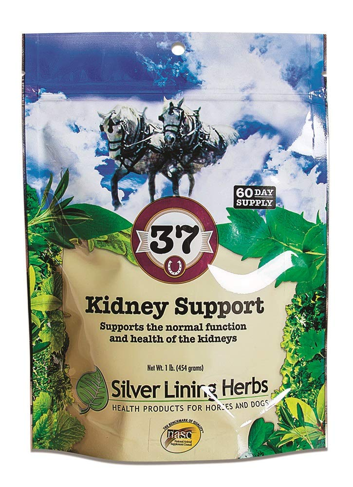 Silver Lining Herbal Equine Silver Lining Herbs 37 Kidney Support