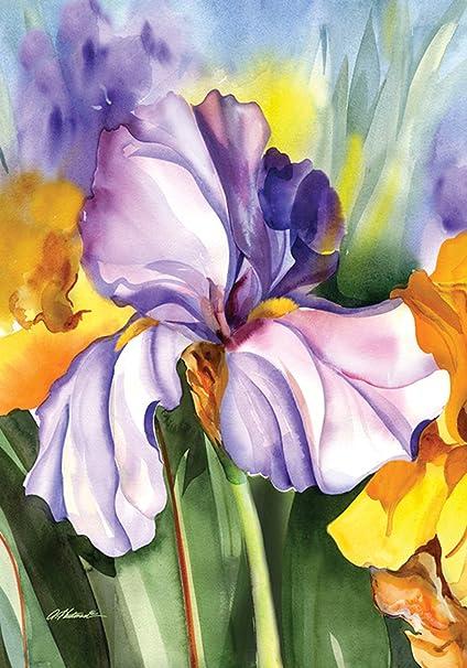 Amazon Com Toland Home Garden 109596 Iris Field 28 X 40 Inch Decorative House Flag 28 X 40 Outdoor Flags Garden Outdoor