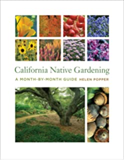 California Native Gardening: A Month By Month Guide