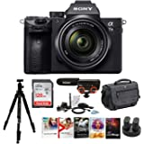 Sony Alpha a7iii Mirrorless Digital Camera with 28-70mm Lens and Accessory Bundle