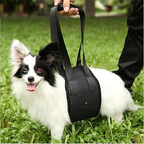 Cutepet Perro Elevación Soporte Arnés Canino Dog Support ...