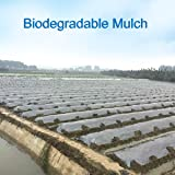 Agfabric 1.57mil Bio-Mulch Biodegradable Plasticulture Film Landscape for Organic Gardening Gardening Farming Film Weed Barrier 4x50ft Size black