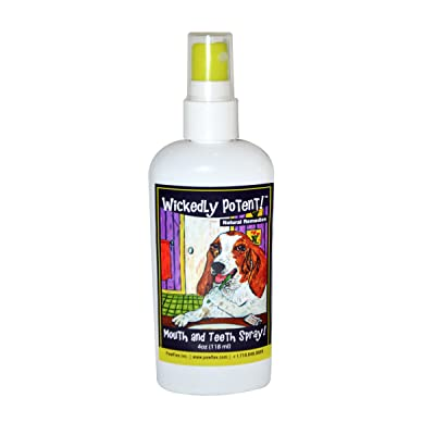 Wickedly Potent! Vegan All Natural Dental Care