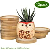ZOUTOG Plant Saucer, 2.5'' Bamboo Planting Tray for Succulent Pots, Round Plant Pot Saucers for Owl Pot with Hole, Pack of 12