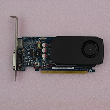 Amazon.com: NVIDIA GeForce GT420 PCIe, memoria 2 GB Tarjeta ...