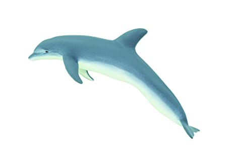 Amazon.com  Safari Ltd Monterey Bay Aquarium Sea Life Collection ... 4fad533b3