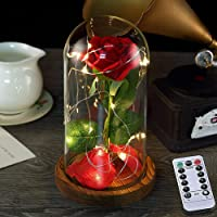 Beauty and The Beast Rose, Glass Dome LED String Lights Inside Red Silk Rose with Wooden Base Forever Rose Best Gifts for Mom Wife Girlfriend Party Wedding Birthday Anniversary - Gift Packaging