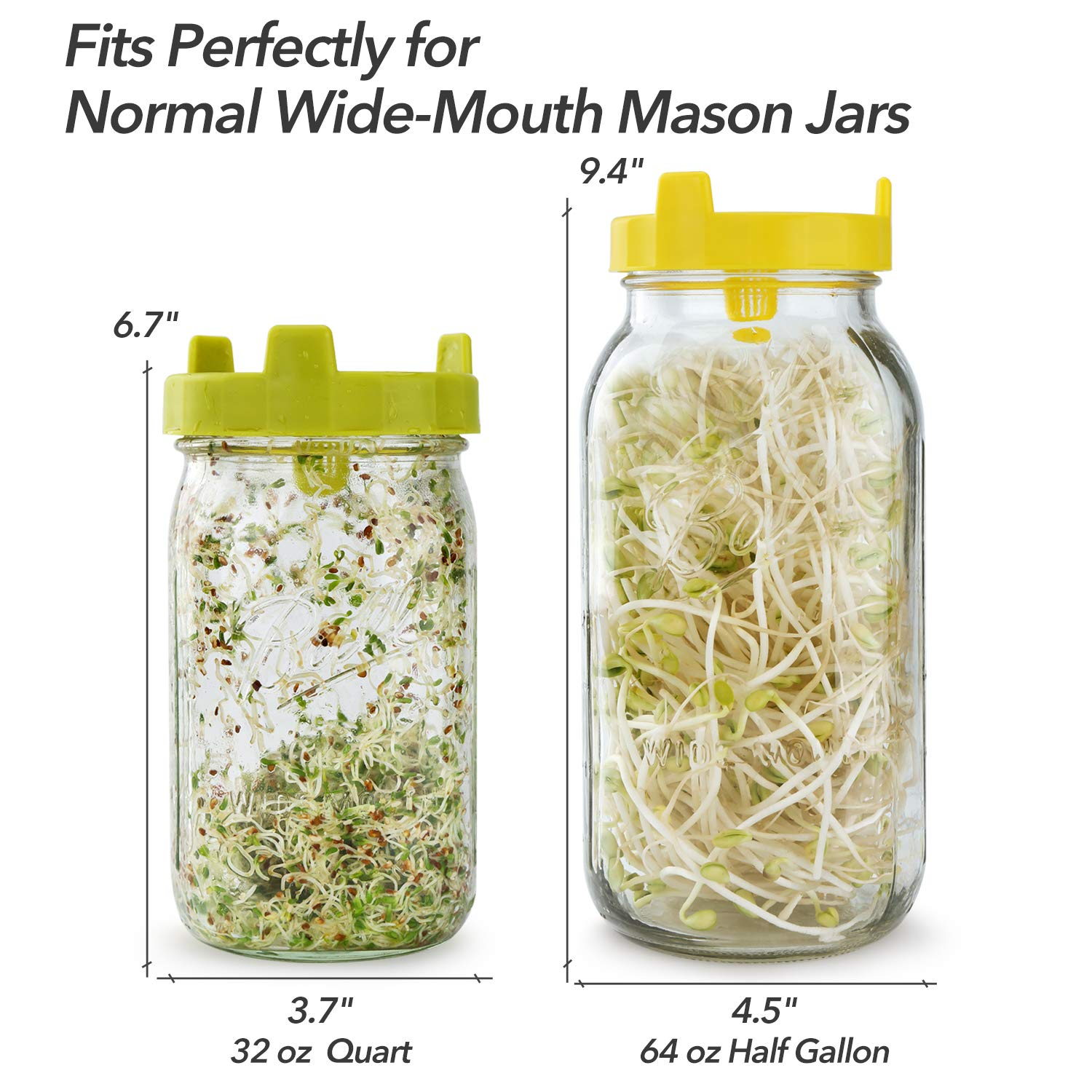 Soligt Easy Rinse & Drain Sprouting Lids for Wide Mouth Mason Jars – 6 Pack by SOLIGT (Image #5)