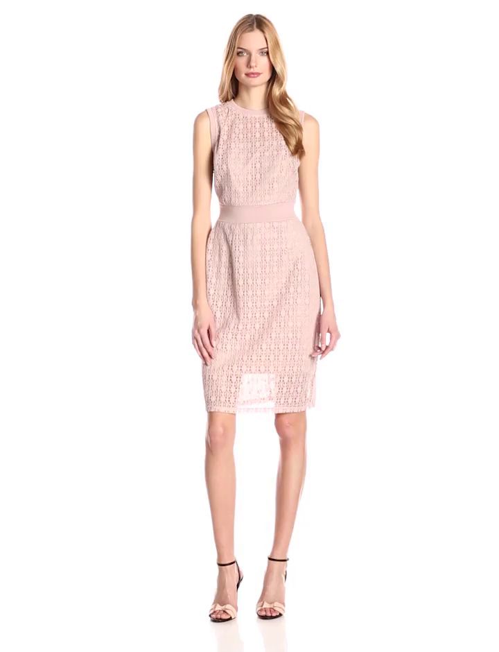 Taylor Dresses Women's Chemical Burn-Out Sleeveless Lace Dress with Knit Waist, Blush, 10